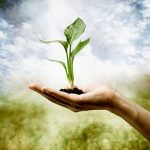 What Is The Importance of Research in Environmental Science?