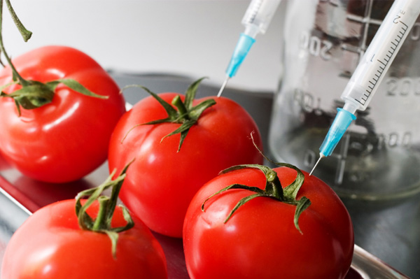 What Are Genetically Modified Foods