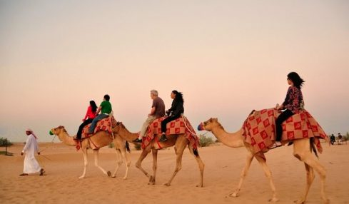 A Dubai Trip Cannot Be Complete Without The Morning Safari Dubai