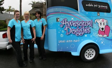 What San Diego Mobile Groomers Do Different and Better