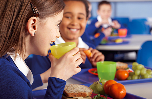 School Lunch Lines – A Common Cause Of Obesity In Middle School Students