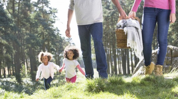 Rights Of Foster And Adoptive Parents