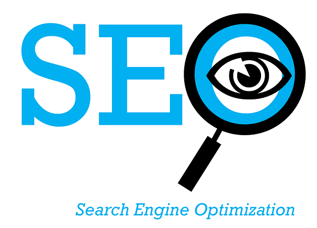 What Your SEO Consulting Guy Won't Tell You