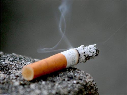 Smoking: A Danger To Life