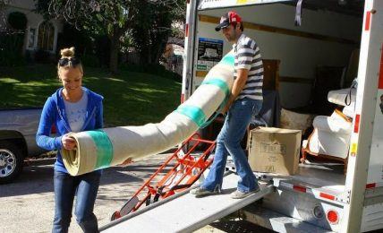 Removal Services Provided by Experts At Affordable Cost