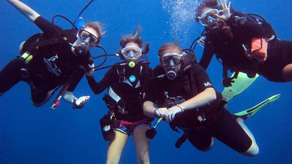 Enjoy The Adventurous Diving In The Waters Of Koh Tao