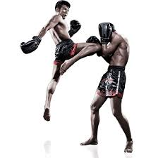 The Sport Activity With Muay Thai Camp Fitness In Thailand and Travel