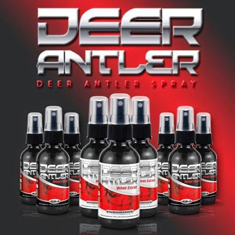 Deer Spray Antler Is Useful For Injury Recovery