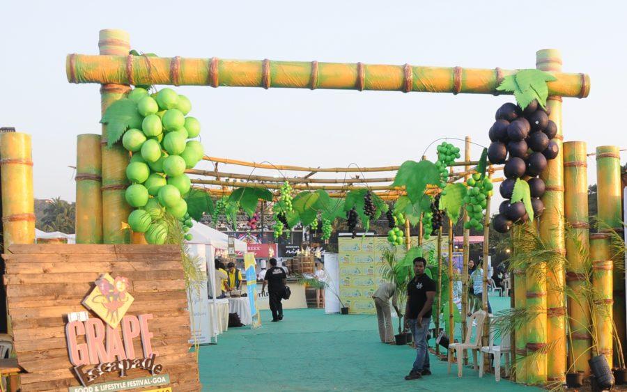 Grape escapade in Goa