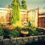 A Beginner's Guide To The Secret Garden