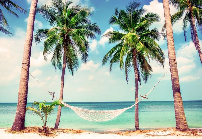 3 Reasons You Need A Vacation