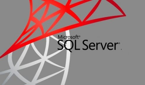 Detangling SQL from SQL Server and MySQL Server: Which Server Is Better and Why?