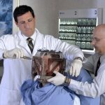 What A Gamma Knife Surgery Is All About?